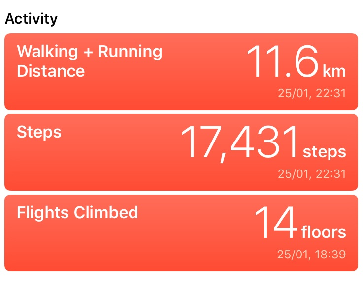 "A screenshot of the iPhone ""Health"" app activity tracker showing ""walking and running distance, steps and flights climbed"""