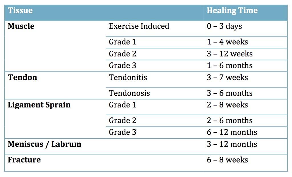 Healing Times 2